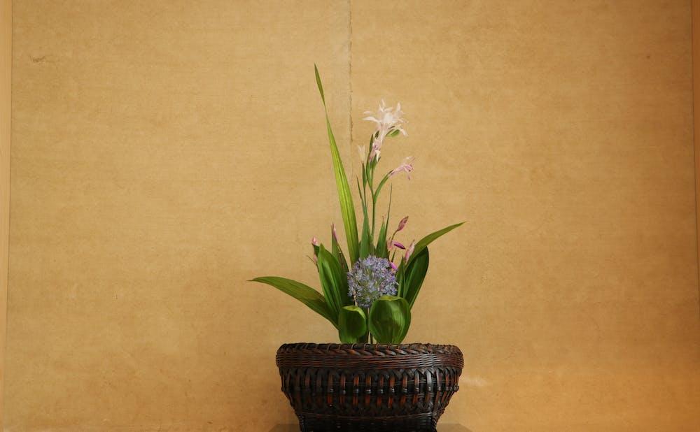 「いち太」の生け花