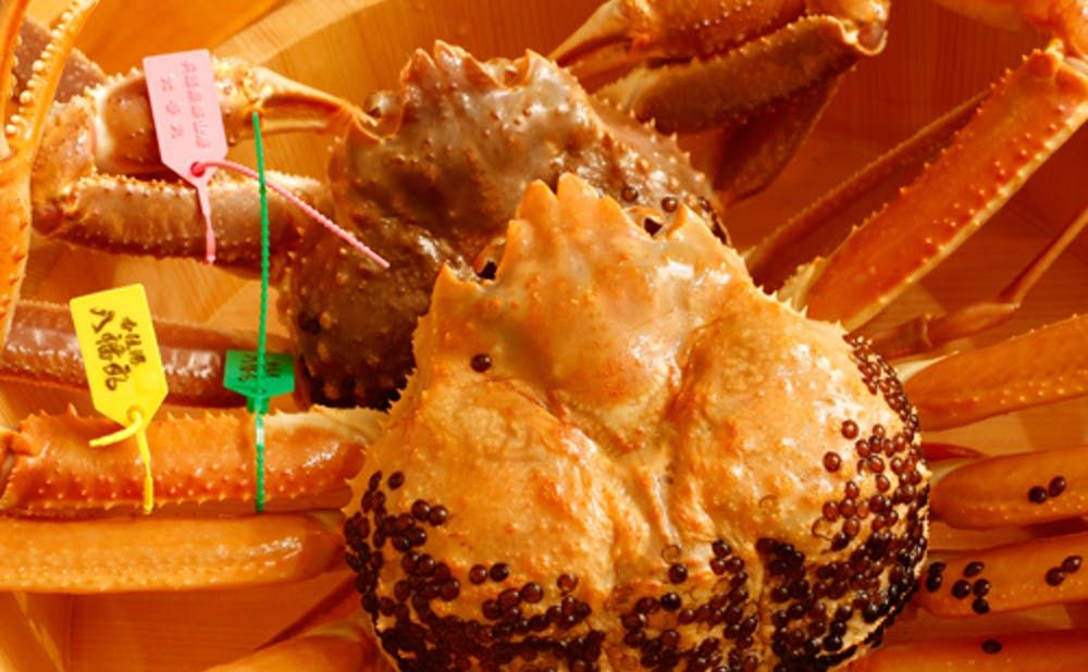 「銀座 きた福」の蟹料理
